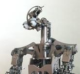 Domo robot
