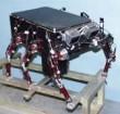 image of Lemur robot