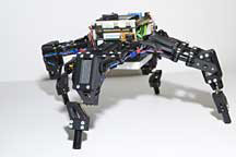 4-armed resilient robot